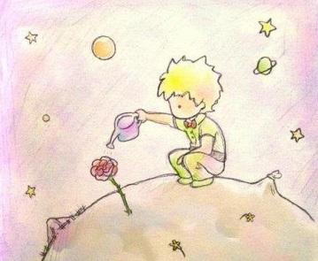 """domenica 11 gennaio """"Il Principe e La Rosa"""""""