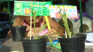 giardinaggio-coccodrilloinnamorato